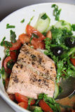 Salmon salad with black olives Stock Photography