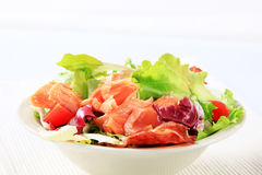 Salmon salad Royalty Free Stock Photography
