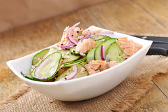 Salmon salad Stock Images