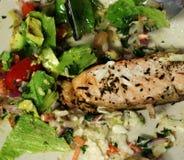 Salmon and Salad Stock Photography
