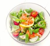 Salmon Salad with fresh vegetables. Stock Image