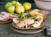 Salmon Salad and Fruit Royalty Free Stock Images