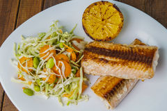 Salmon with salad and lemon Royalty Free Stock Photos