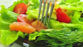 Salmon Salad, natürliches Mittagessen der Avocado-Zeitlupe stock footage