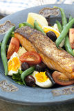 Salmon Salad Nicoise Royalty-vrije Stock Foto