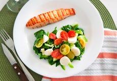 Salmon with salad Royalty Free Stock Photos