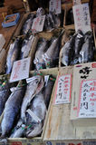 Salmon on sale in the fish market. A closeup of Salmon (sake) from various origins put on sale at the Tsukiji Fish Market in Tokyo, Japan stock photos