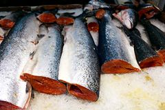Salmon for sale. In San Francisco& x27;s China Town Royalty Free Stock Images