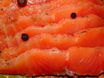 Salmon salted with spices. Red fish salmon salted with spices and chopped to pieces Stock Image