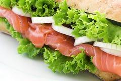 Salmon Sandwich Royalty Free Stock Image