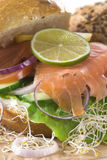 Salmon Sandwich Stock Photography