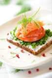 Salmon Sandwich royalty free stock images