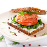 Salmon Sandwich Stock Image