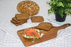 Salmon Sandwich Imagen de archivo libre de regalías