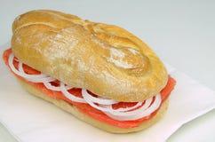Salmon Sandwich com cebolas imagem de stock royalty free