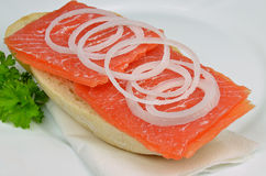 Salmon Sandwich com cebolas e salsa imagem de stock