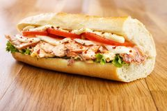 Salmon sandwich. Hot smoked salmon sandwich with tomato , mozzarella cheese , lettuce and mayonnaise Stock Image