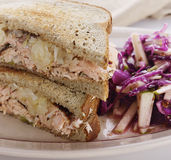 Salmon Sandwich and Red Cabbage Royalty Free Stock Photo