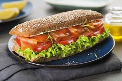Salmon sandwich with vegetable royalty free stock photos