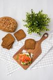 Salmon Sandwich. On wooden plate Royalty Free Stock Photo