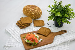 Salmon Sandwich. On wooden plate Stock Image