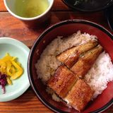 Salmon Sashimi Royalty-vrije Stock Afbeelding