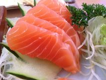 Salmon Sashimi Immagine Stock