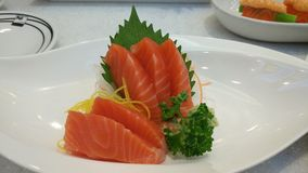 Salmon Sashimi,  Japanese food. Fresh salmon,  fever menu for eat lover Royalty Free Stock Image