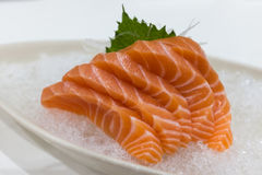 Salmon Sashimi over ijs Stock Foto