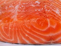 Salmon with sea salt Stock Images