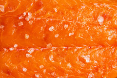 Salmon with sea salt royalty free stock images