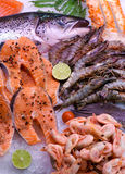 Salmon with seafood Stock Photography
