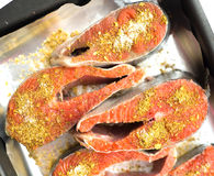 Salmon with seasoning and oregano Royalty Free Stock Photo