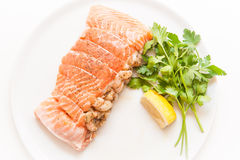 Salmon and shrimps pocket raw on white background Royalty Free Stock Photography