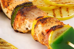 Salmon skewer. Gourmet plate made with wild caught salmon this is natural food Stock Image