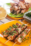 Salmon on skewers on a picnic Stock Photos