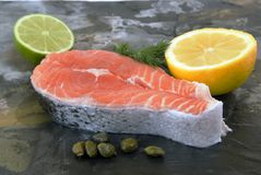 Salmon slice Stock Photos
