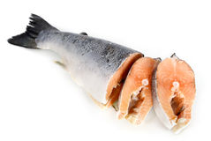 Salmon slices Royalty Free Stock Photography