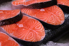 Salmon slices on ice. Close-up of salmon slices on ice Royalty Free Stock Photos