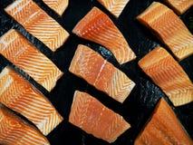 Salmon Slide Fotografía de archivo libre de regalías