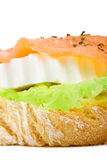 Salmon snack close up. Delicious lettuce an fresh cheese canape topped with slice of smoked salmon Stock Image