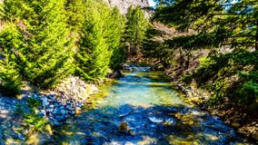 A salmon spawning channel on Cayoosh Creek in British Columbia, Canada royalty free stock images