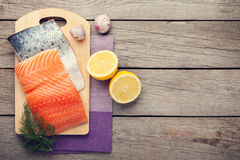 Salmon, spices and condiments Stock Images