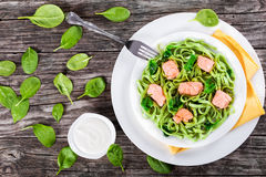 Salmon and Spinach Fettuccine pasta on white dishes royalty free stock photos