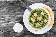 Salmon and Spinach Fettuccine pasta on white dishes stock image