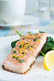 Salmon with Spinach Royalty Free Stock Image