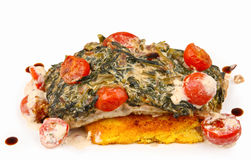 Salmon with spinach Royalty Free Stock Photography