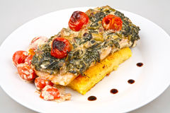 Salmon with spinach Royalty Free Stock Photos
