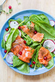 Salmon with spinach and pomegranate  salad Royalty Free Stock Photo