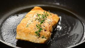 Salmon Steak stock video footage
